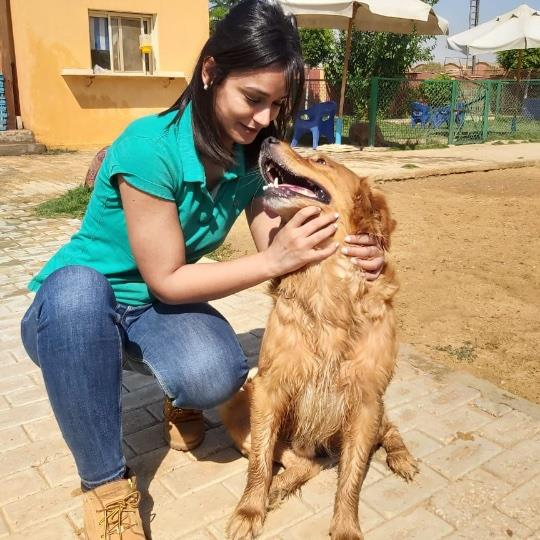 Rana Pet hotel experience in real homes! 5