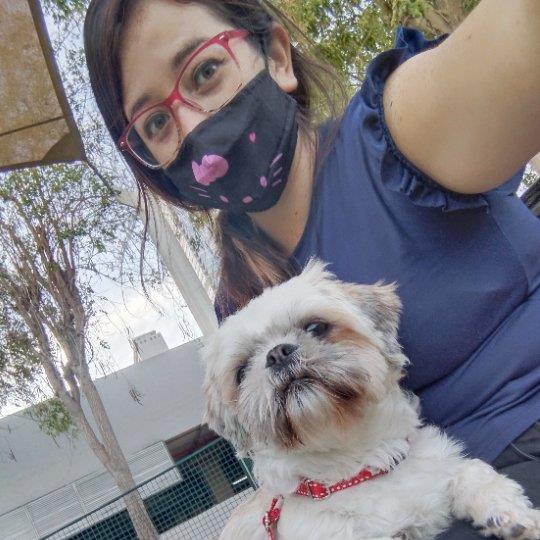 Liseth  Pet hotel experience in real homes! 10
