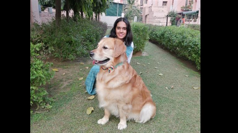 Pallavi Dog boarding, Pet Boarding, Dog Walking and Pet Sitting.