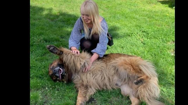 Wiktoria  Dog boarding, Pet Boarding, Dog Walking and Pet Sitting.