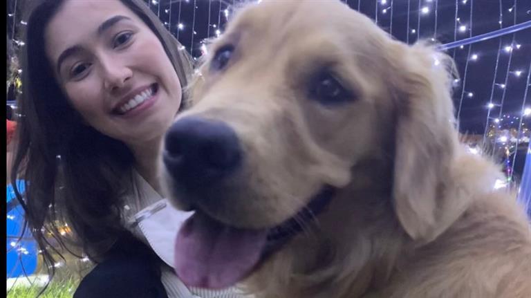 Ariane Dog boarding, Pet Boarding, Dog Walking and Pet Sitting.