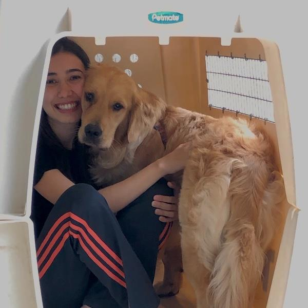 Ariane Pet hotel experience in real homes! 3