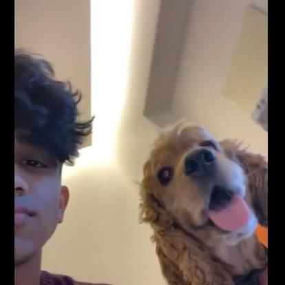 Vaibhav Pet hotel experience in real homes! 2