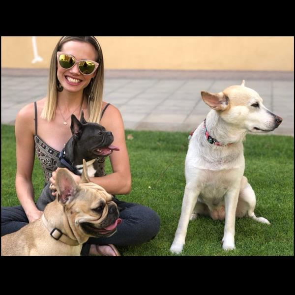 Alessandra Pet hotel experience in real homes! 7
