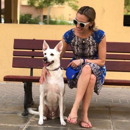 Alessandra Pet hotel experience in real homes! 17