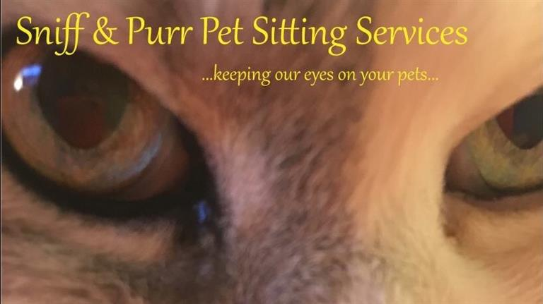 Eszter Dog boarding, Pet Boarding, Dog Walking and Pet Sitting.
