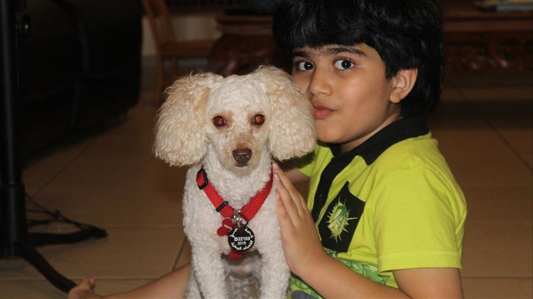 Dia Dog boarding, Pet Boarding, Dog Walking and Pet Sitting.