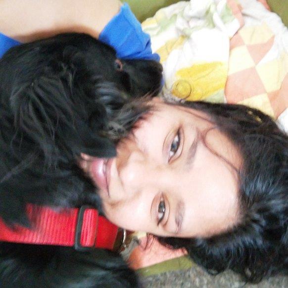 Akanksha Pet hotel experience in real homes! 1
