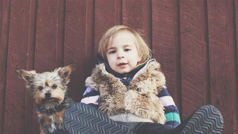 Ainur Dog boarding, Pet Boarding, Dog Walking and Pet Sitting.