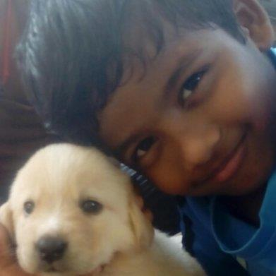 Rathika  Pet hotel experience in real homes! 1