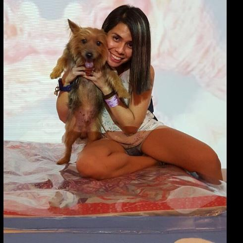 Sherilyn Pet hotel experience in real homes! 2